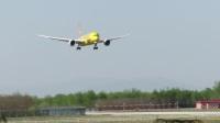 北京首都机场拍机—海航HU7212-B789[B-7302/黄熊猫涂装]降落