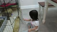 美国家庭领养的中国女孩日常 (4)