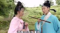 黄梅戏【龙凤奇缘】韩再芬 汪静(全3集)1998