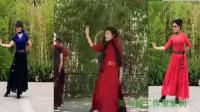紫竹院广场舞(红枣树) 学跳