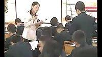 丑小鸭(初中语文特级教师参评人选课例展示)