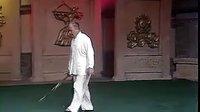 传统杨式太极刀 (杨振铎讲解教学)