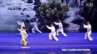 2015年全国武术套路锦标赛太极拳赛 集体项目 016 集体拳(深圳)