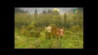『桂馨基金会』《老师》宣传片