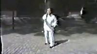 王培生太极十三丹