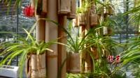 蟹岛绿色生态园