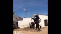 【007moto】路遇KTM 1190摩托车,是驴是马拉出来遛遛