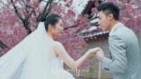 日本旅拍 · 樱花盛开时,愿有你相伴 | GoldenLove出品