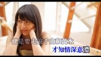 HD《最真的梦》周华健 经典老歌