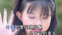 卓依婷.-.[浪迹天涯].MV.(DVDRip)