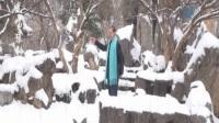 紫光唱豫剧·数九寒天风雪凛
