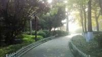 【原创视频】公园里的早晨