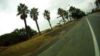 济州岛有椰子树很好看