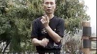 麦氏实战咏春3