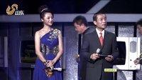 大剧正红 电视剧导演工作委员会年度评选表彰大会 上