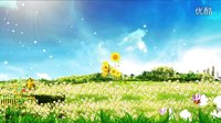 3第一传媒-LED高清城市,花开,树-春天在哪里歌(含音乐)