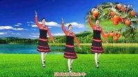 荆州雨荷广场舞《又见山里红》