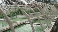 06_泥鳅室内养殖_泥鳅养殖技术亩产_泥鳅养殖技巧