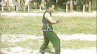 传统武术 龙尊拳 002 龙尊拳一百零八式(福建)