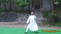 武当太极 搂膝拗步【陈师宇】太极基本功 分解教学5