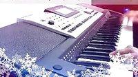 大约在冬季 电子琴演奏