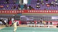 2013年徐州维维杯-全卫东-形意拳九州棍
