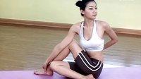 瑜伽视频教程初级 入门瑜伽教程 初级瑜伽视频教学