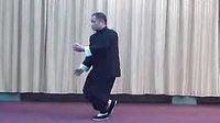 85式杨氏太极拳 背面全套动作演示 高云[口令音乐]