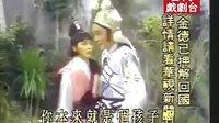 叶青歌仔戏 新七侠五义15