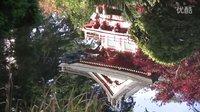 旧金山茶园 Tea Garden in San Francisco