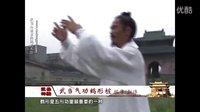 武当功夫 袁修刚 武当气功鹤形桩-武当道家传统武馆