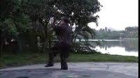 李正 杨式府内派皇家太极拳 拳械欣赏