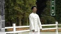 王二平 42式太极拳