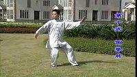 王二平 48式太极拳