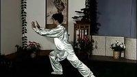 李德印 40式杨式太极拳2VCD 示范 陈思坦