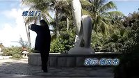 神意太极拳教学_5_标清