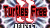 Turtles Free II