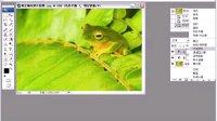 PS视频教程系列29 修正偏色照片