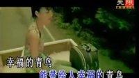 幸福的青鸟张韶涵MTV