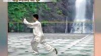 陈思坦42式太极拳教学视频