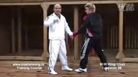 咏春拳教学 lesson 56