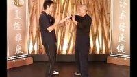 咏春拳中小念头(4)摊、膀、伏手的黐手应用 叶准讲解