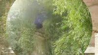 秦安县中山乡郭箕村拍客 打工拍摄的《泸洲烟雨》