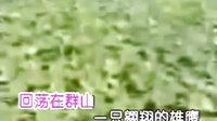 留恋草原 燕尾蝶