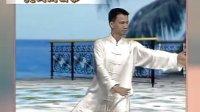 陈思坦32式太极拳教学视频