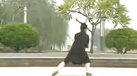 龙门太极剑  李法均道长