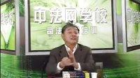 2009司法考试中法网课件:刑法阮齐林