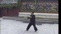 传统陈式太极拳48式