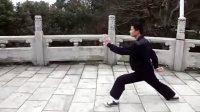 温州洞头县武术协会蔡向东老师的太极拳