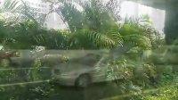 【线路录像】广州B21路【棠下小区总站→革新路(红帆酒店)总站】